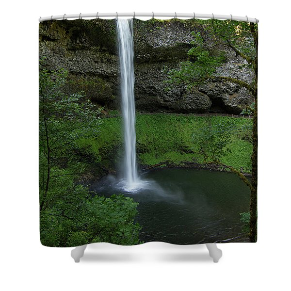 Silver Falls Silver Mist Shower Curtain