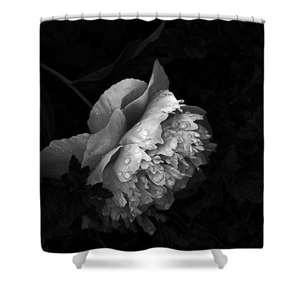 Silver Flower Shower Curtain