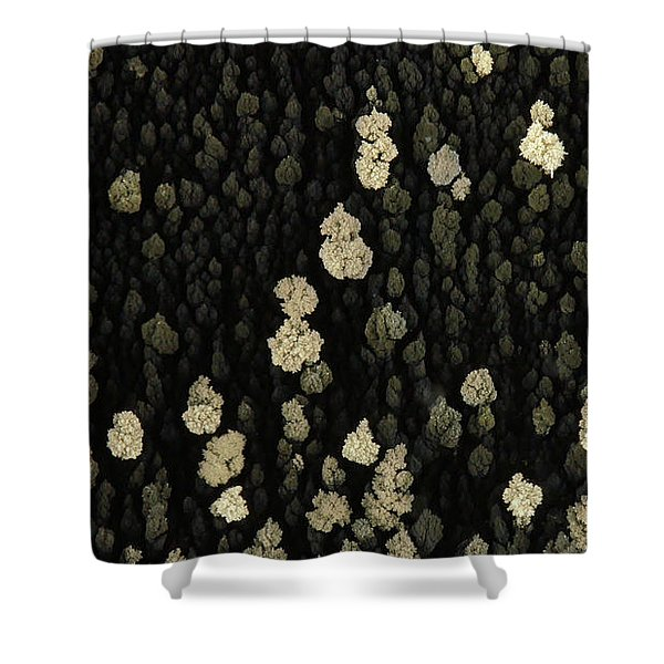 Silver Crystal Shower Curtain