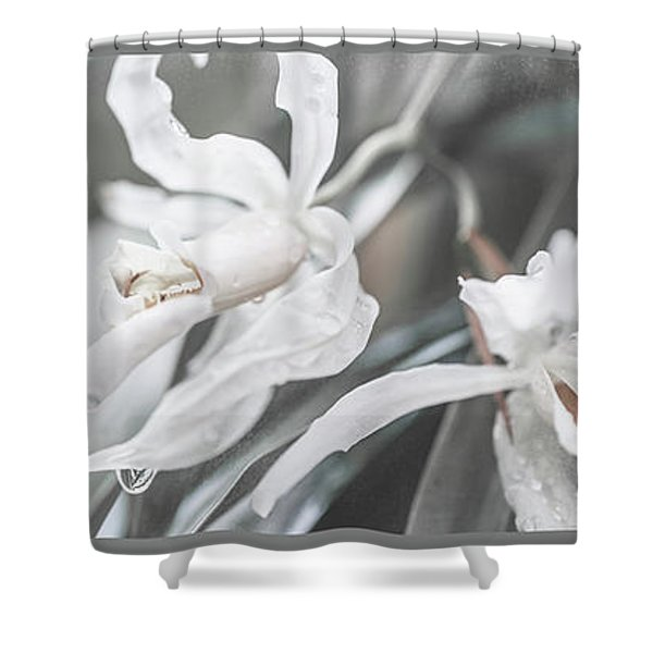 Silver Melody. Triptych Shower Curtain