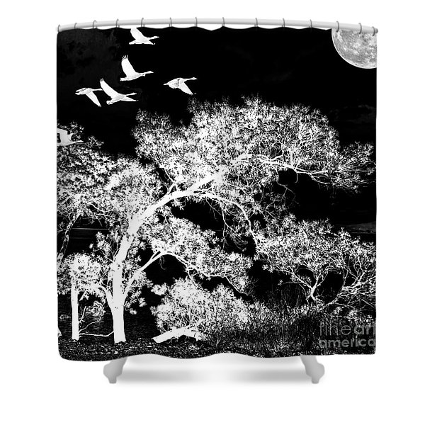 Silver Nights Shower Curtain