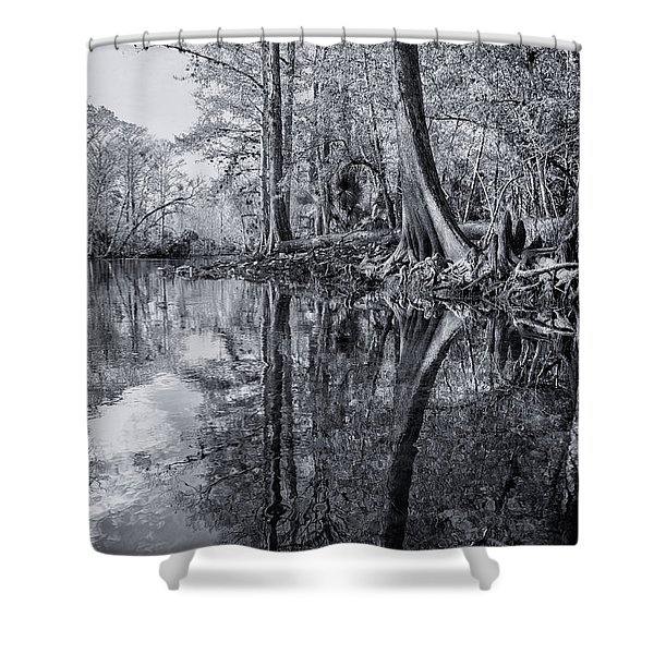 Silver River Shower Curtain