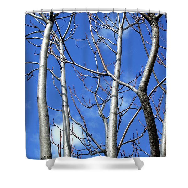 Silver Smooth Shower Curtain
