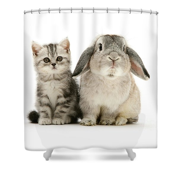 Silver Tabby And Rabby Shower Curtain