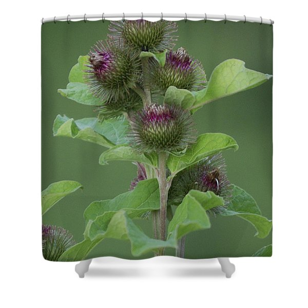 Simple Things Shower Curtain