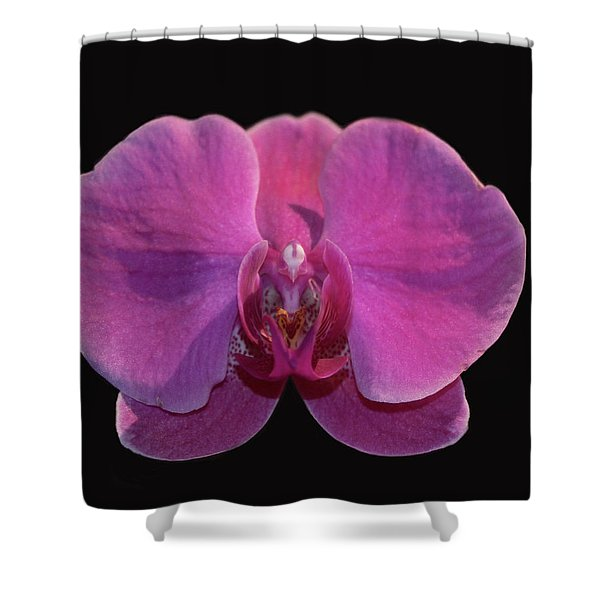 Simply Orchids Shower Curtain