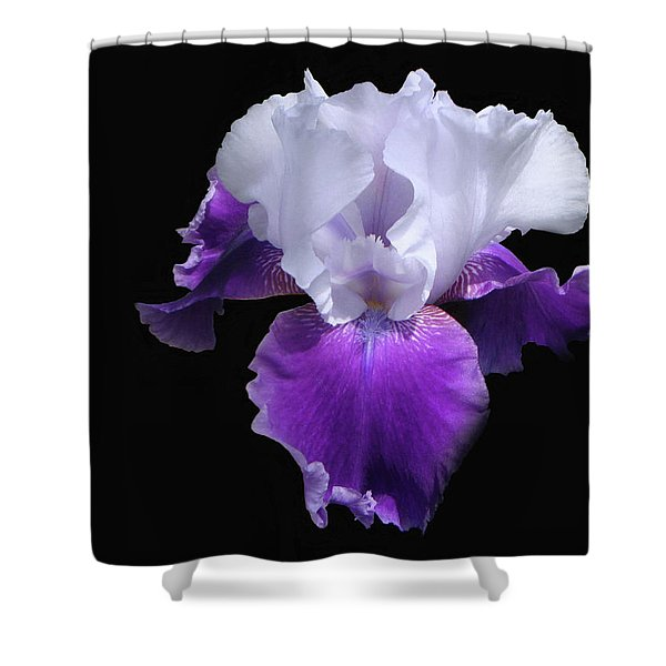 Simply Royal Shower Curtain