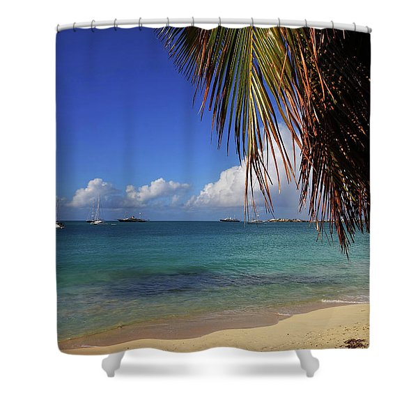 Simpson Bay Palm Tree Caribbean St Martin Shower Curtain