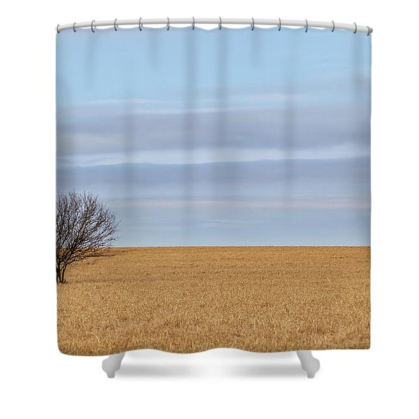 Single Tree In Large Field With Cloudy Skies Shower Curtain