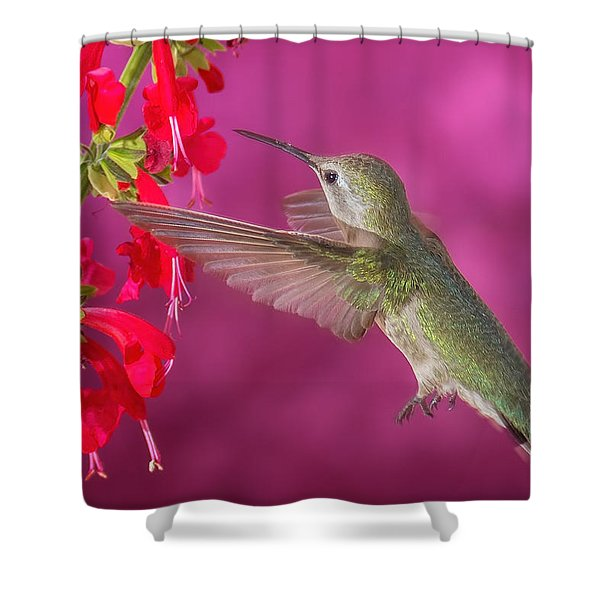 Sipping At The Salvia Shower Curtain
