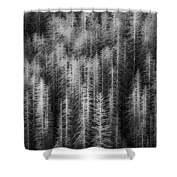 Sitka Abstraction Shower Curtain