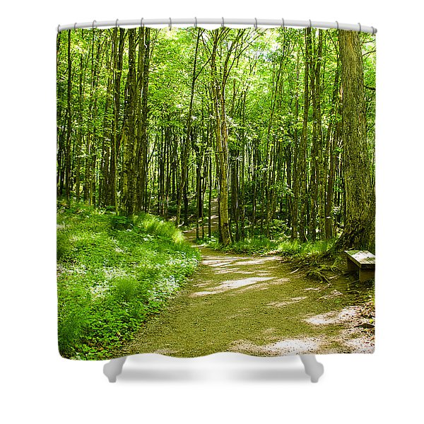 Sitting Among The Trees Shower Curtain