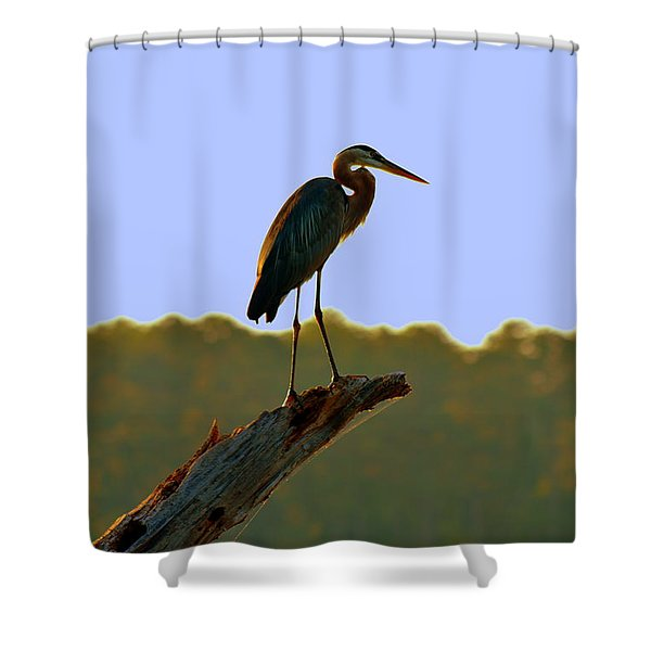 Sitting High On The Log Shower Curtain