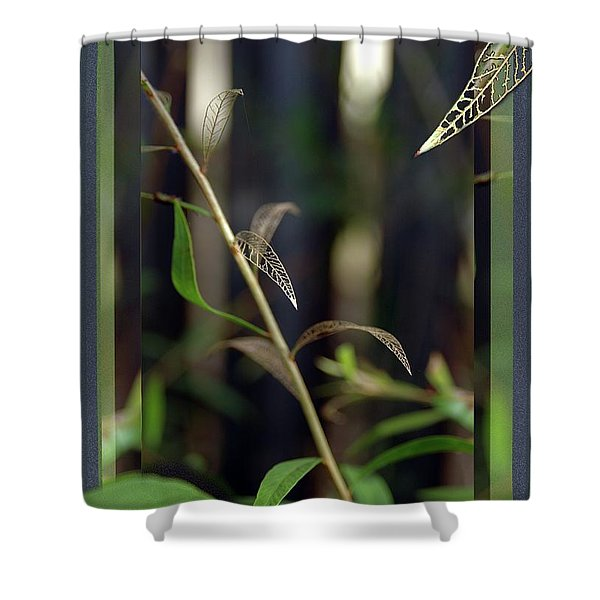 Skeletons And Skin Shower Curtain