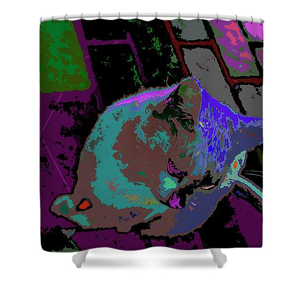 Skid Row Kitten Shower Curtain