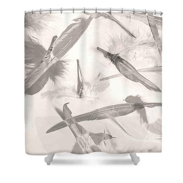 Skies Of A Feather Shower Curtain