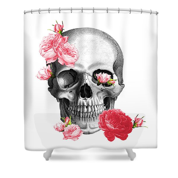 Skull With Pink Roses Framed Art Print Shower Curtain