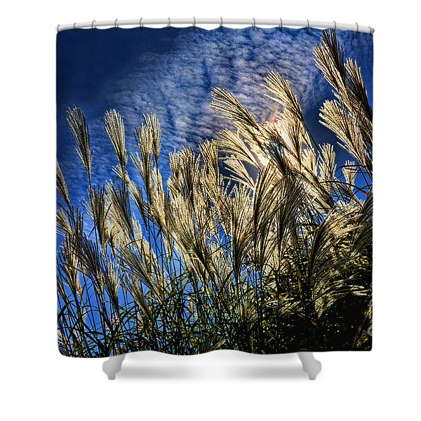 Sky Dusters Shower Curtain
