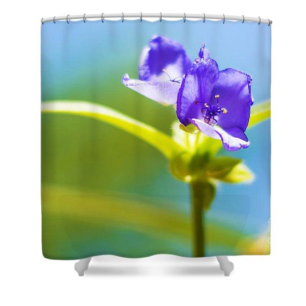 Sky Flowers Shower Curtain