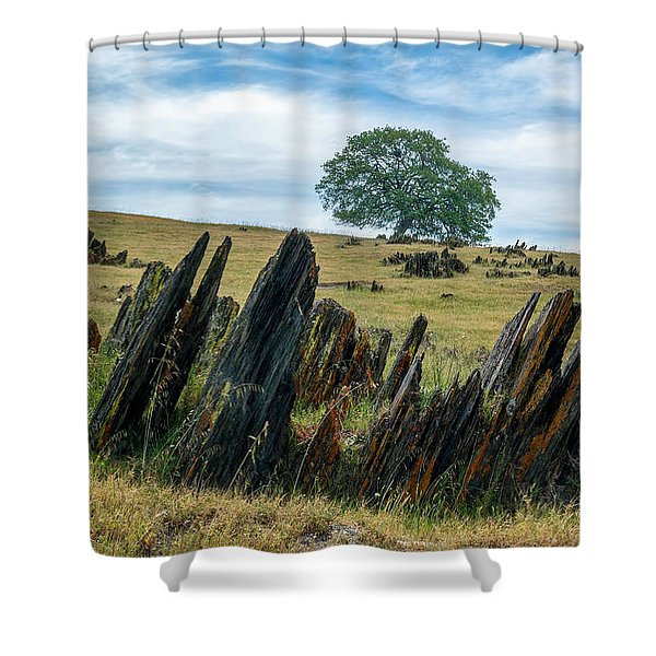 Slate Filled Meadow Shower Curtain