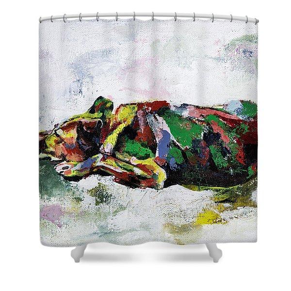 Sleeping Dog_2 Shower Curtain