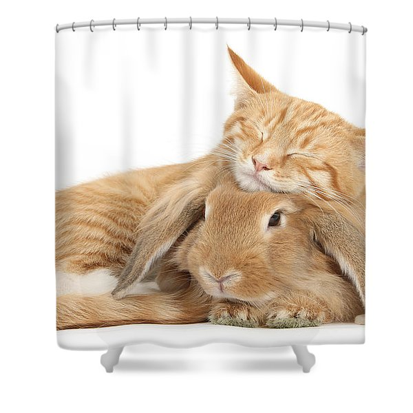 Sleeping On Bun Shower Curtain