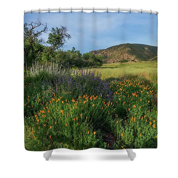 Sleeping Poppies, Mission Trails Shower Curtain