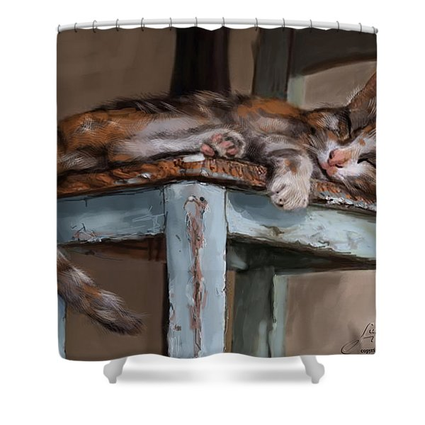 Sleepting Cat Shower Curtain