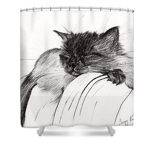 Sleepy Baby Shower Curtain