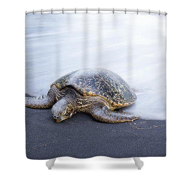 Sleepy Honu Shower Curtain