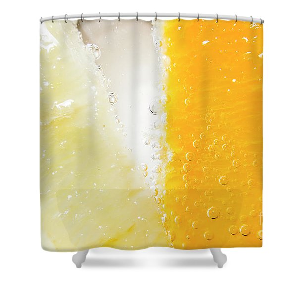 Slice Of Orange And Lemon In Cocktail Glass Shower Curtain