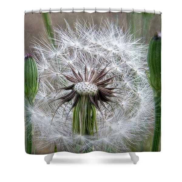 Slight Breeze Shower Curtain