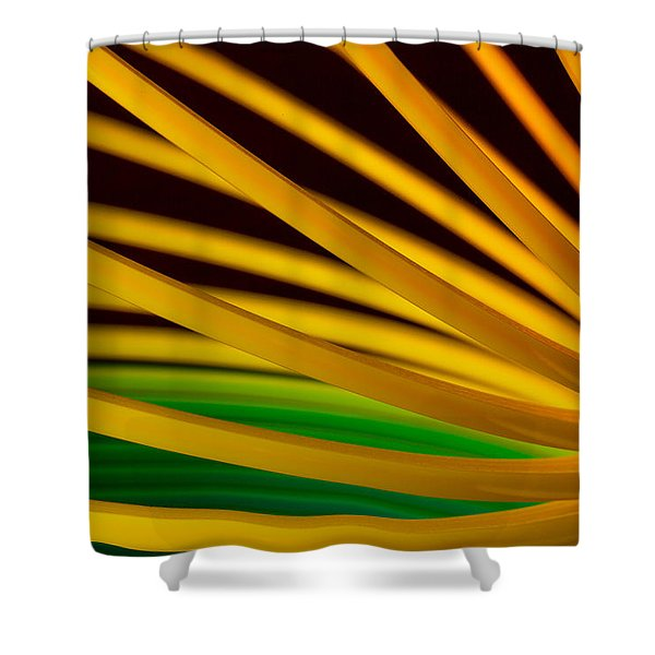 Slinky Iv Shower Curtain