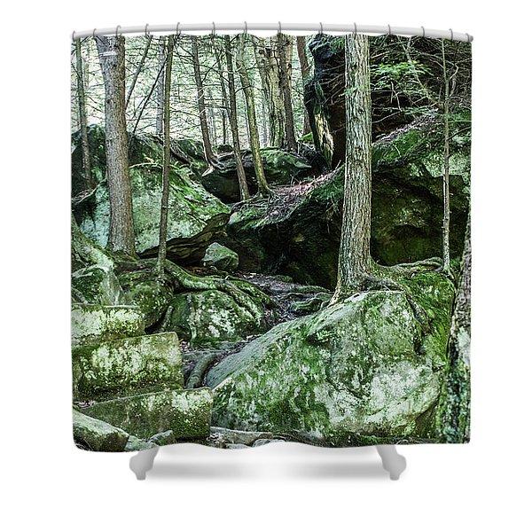 Slippery Rock Gorge - 1933 Shower Curtain