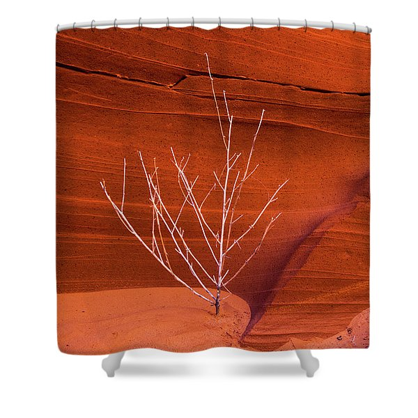 Slot Canyon Sentinel Shower Curtain