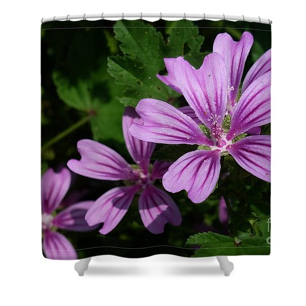 Small Mauve Flowers 6 Shower Curtain