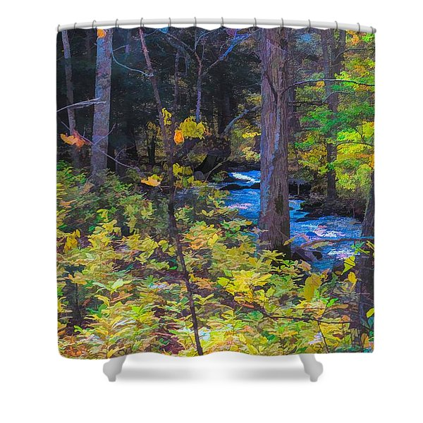 Small Stream Through Autumn Woods Shower Curtain