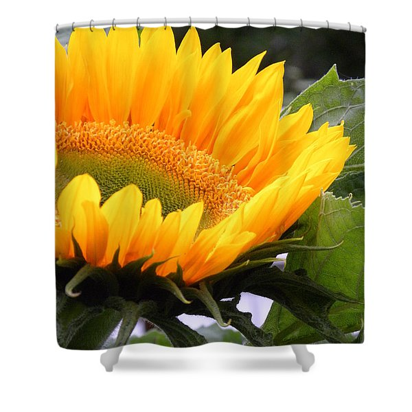 Smiling Flower Shower Curtain