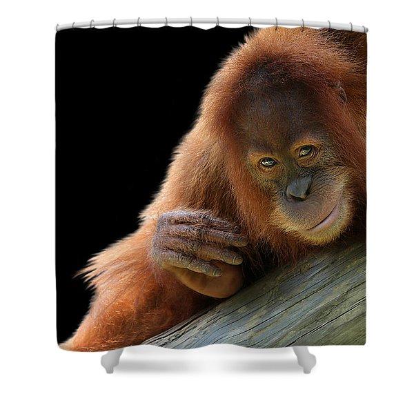 Cute Young Orangutan Shower Curtain