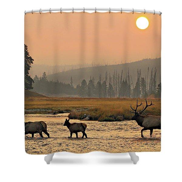 Smokey Elk Crossing Shower Curtain