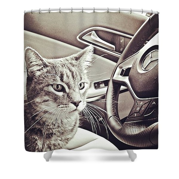 Smokey Loves The Mercedes Cla Too! Shower Curtain