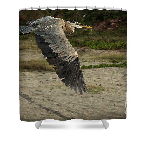 Smooth Sailing Wildlife Art By Kaylyn Franks Shower Curtain