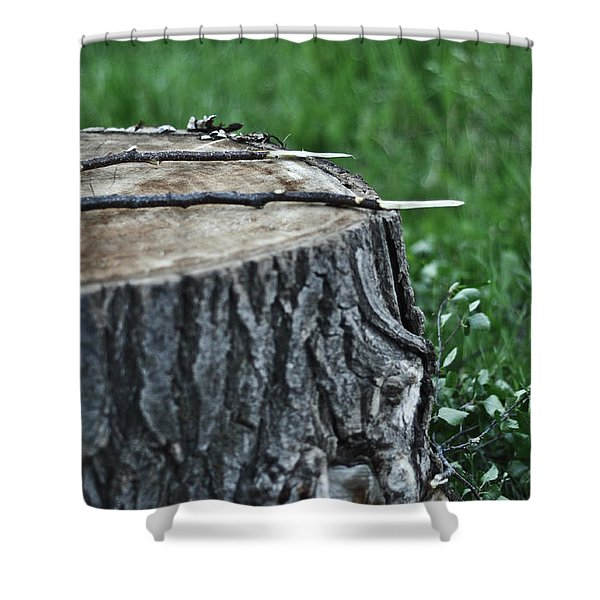 S'more Sticks Shower Curtain