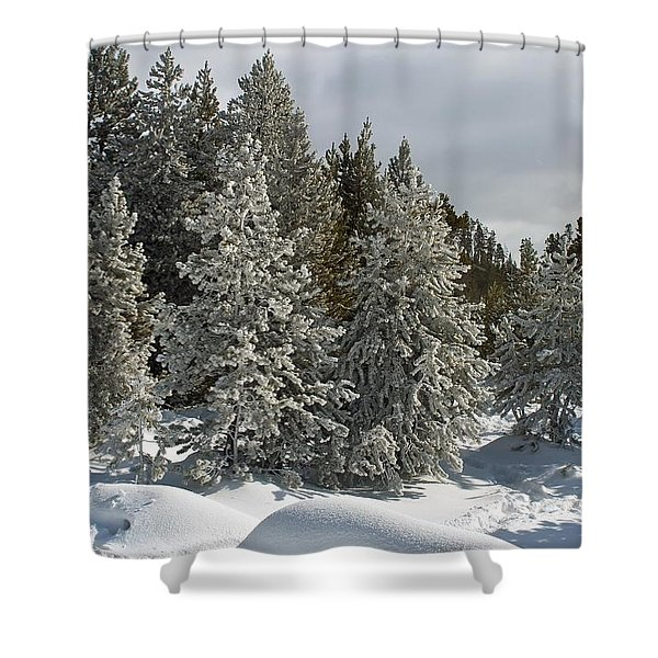 Snow And Ice Covered Evergreens At Sunset Lake  Shower Curtain