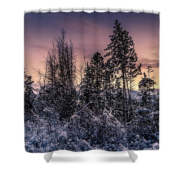 Shower Curtain featuring the photograph Snow Covered Pine Trees by Lester Plank