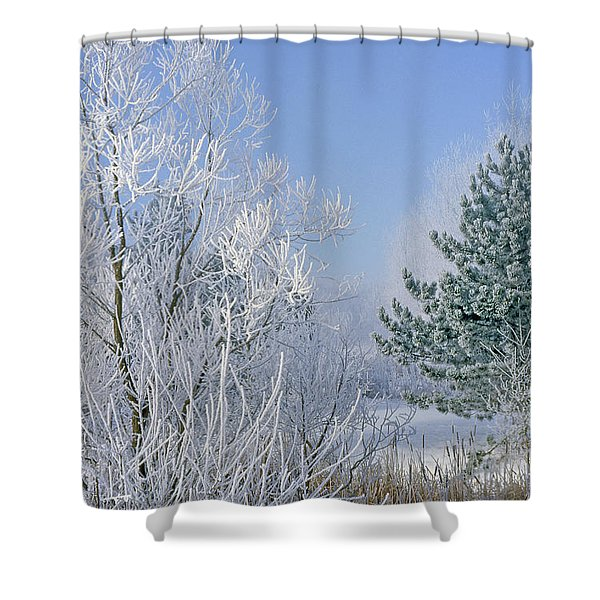2a357 Snow Covered Trees At Alum Creek State Park Shower Curtain