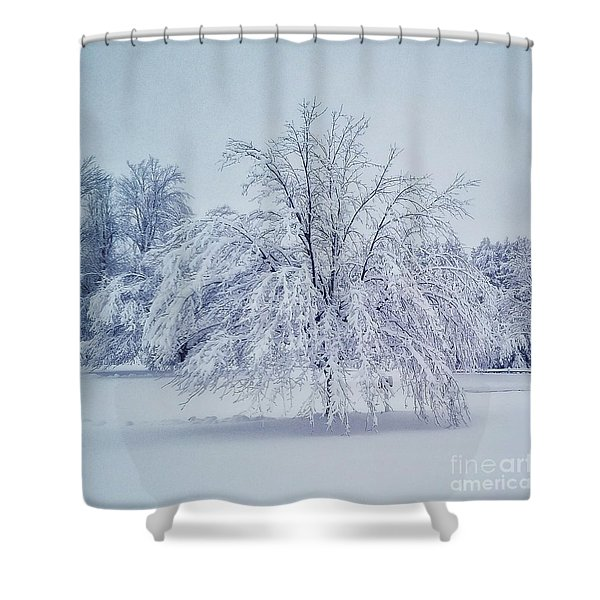 Snow Encrusted Tree Shower Curtain