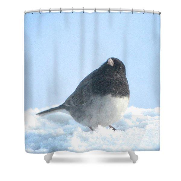 Snow Hopping #2 Shower Curtain