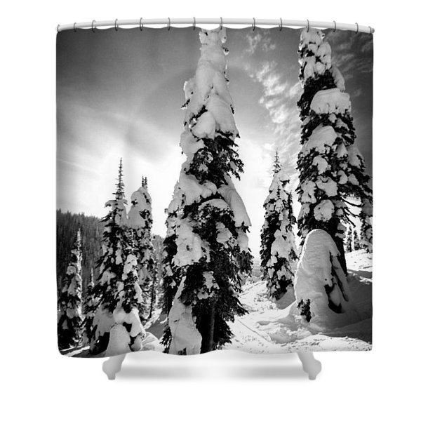 Snow Laden Tree Shower Curtain