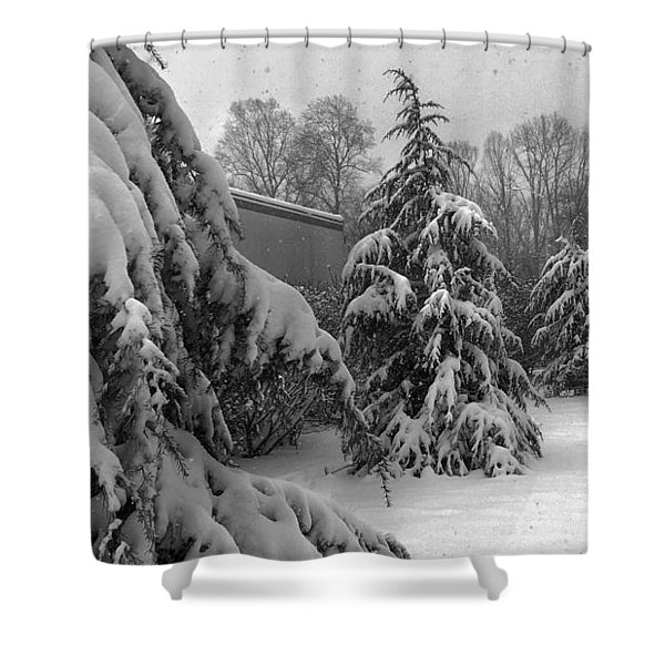 Snow On Pines Shower Curtain